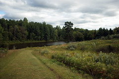 Phelps Pond at C. F. Phelps Wildlife Management Area - 1