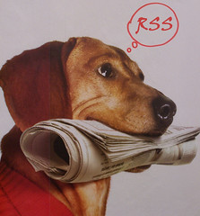 Newspaper dog thinking RSS