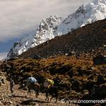 Carrying Equipment Over the Pass - Day 2 of Salkantay Trek, Peru