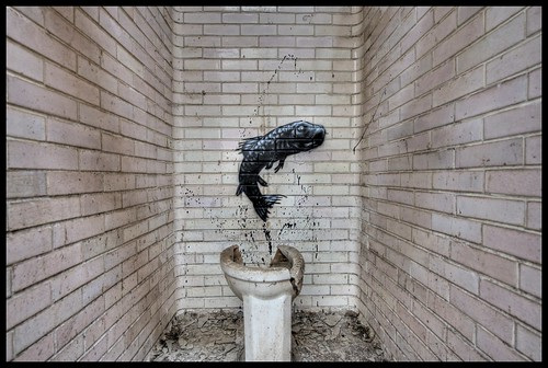 Like a fish out of water - Roa
