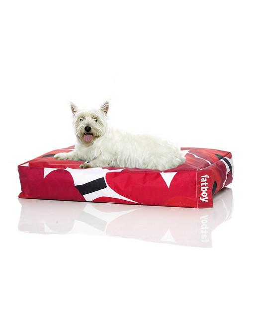 5227 wdybt fatboy doggie marimekko red s flickr photo. Black Bedroom Furniture Sets. Home Design Ideas