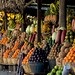 Frutas de Guatemala