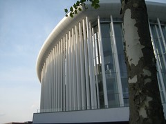 philharmonie-tree