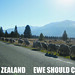 New Zealand, Ewe Should Come