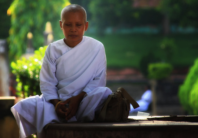 A Buddhist Nun Meditating At Mahabodhi Temple, India