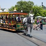 Disneyland August 2009 001