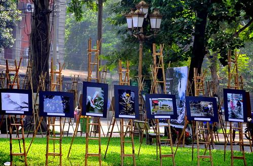 park display paintings vietnam hanoi