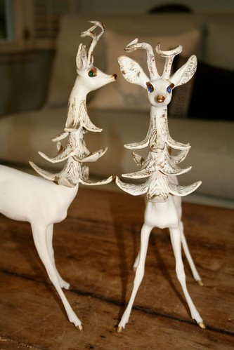 a pair of old deers