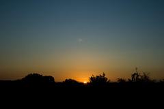 Coucher de soleil / IMG_3523