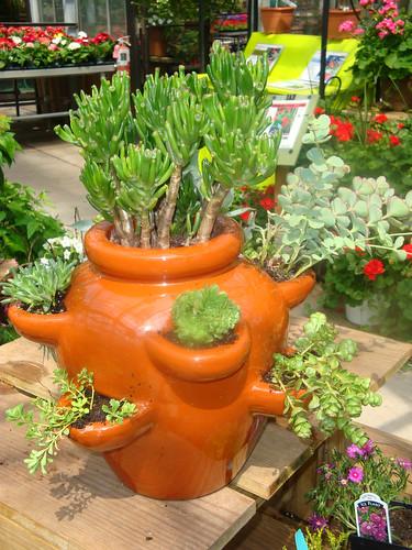 3926429532 - Container gardening basics ...