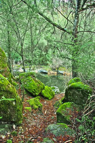 Margens do Rio Dão - Portugal