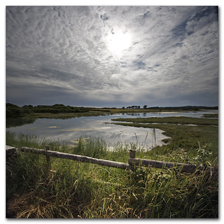Landscape photography from Newtown, Isle of Wight. Tales from the riverbank.