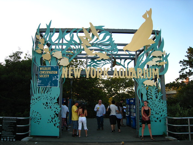 New york aquarium flickr photo sharing Aquarium in coney island