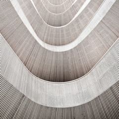 wooden curves no.2