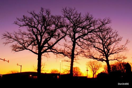 november autumn trees light color fall nature silhouette sunrise canon landscape eos oak natural iowa ia desmoines 50d abigfave canon50d platinumheartaward goldstaraward don3rdse