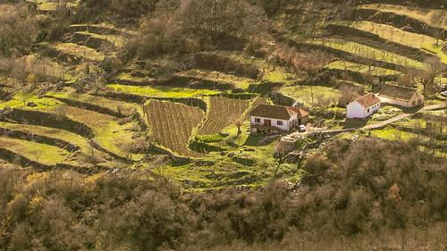 landscape orte montenegro crnagora terrassenfelder danilovgrad zagarač zagarac