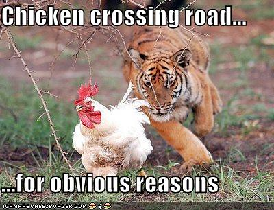 Chickencrossing