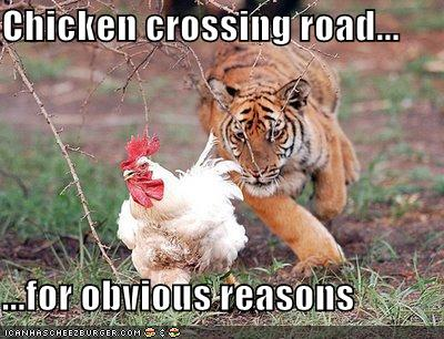Chickencrossing