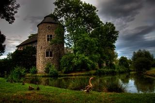 Image de Haus zum Haus. lake duck goose gans enten teich hdr wasserburg