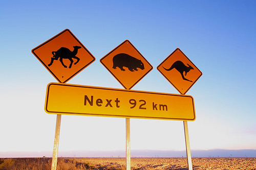 Camel, wombat and kangaroo warning sign. Nullarbor Australia