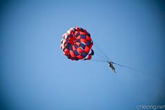 flower(0.0), sailing(0.0), toy(0.0), parachute(1.0), sports(1.0), parasailing(1.0), windsports(1.0), line(1.0), extreme sport(1.0), blue(1.0), sky(1.0),