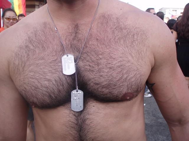 FOLSOM STREET FAIR 2009 - SEXY CHEST ! HANDSOME DUDE's CHEST (SAFE PHOTO)