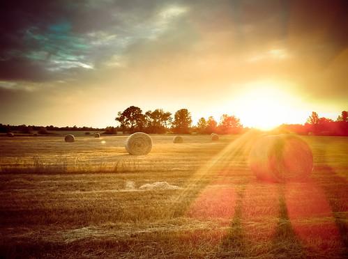 sunset field georgia country flare portfolio griffin haybale iphone slowexposures
