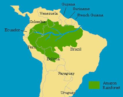 Amazon Rainforest   CHC Geography