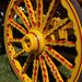 IMG_8852 circus wagon wheel by clay53012