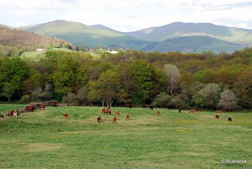 Iráizoz, Valle de la Ulzama by Rufino Lasaosa