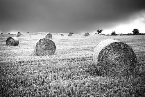 france noiretblanc champs orage sud aveyron citronbleu bottedepaille baptistemorin
