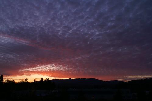 sunsets sunset11109