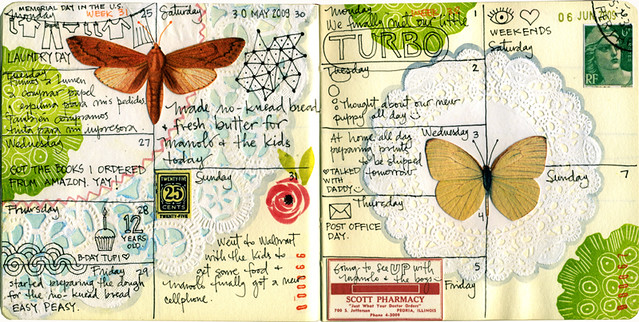 Journal pages May/June 2009