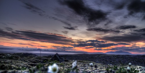 flowers red sky sun sunlight mountain color colour green nature grass night clouds sunrise iceland twilight rocks stones aron hdr ísland