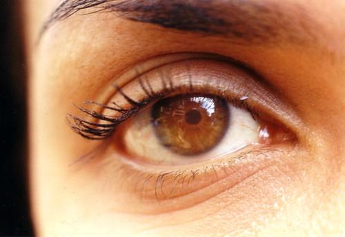 Ojos de Girasol
