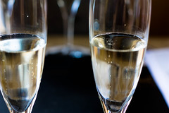 alcohol, champagne, wine, glass, champagne stemware, drink, alcoholic beverage,