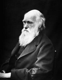 Charles Darwin - Schaffer der ...