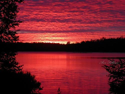 morning light red sky sun reflection tree water beautiful silhouette wisconsin sunrise dawn horizon sunday magical lacduflambeau whitesandlake annsullivan upnorthvacation kodakz980 photocontesttnc09 visiblejoyphotography