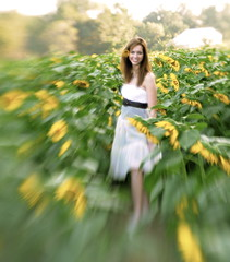 Lensbaby in the sunflowers...