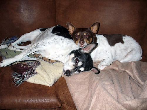 2009-10-14 - Peedee & O-Ren - 0006