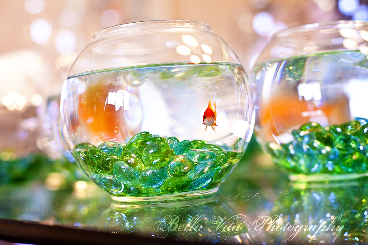 Fish bowl centerpieces for weddings wedding decorations for Fish wedding centerpieces