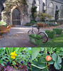 The garden museum, Lambeth