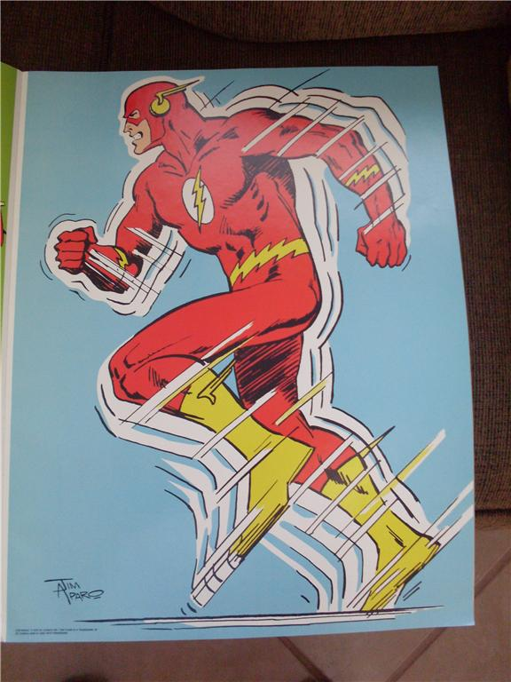dcsh_flash_poster