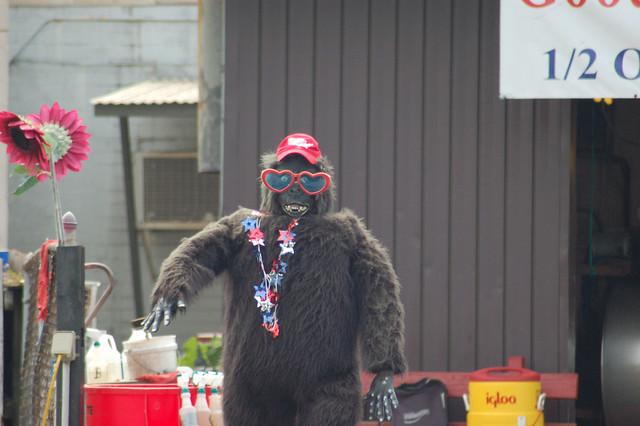 Car Wash Atlanta: Car Wash Gorilla Atlanta