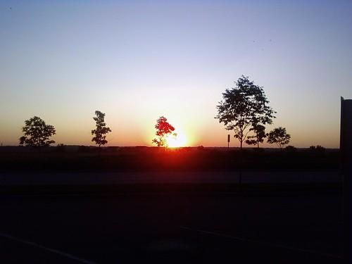 sunrise leessummit