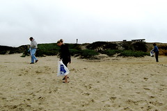 looking for trash at Francis State Beach