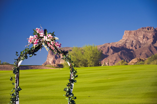 Wedding Arch Backdrop of the Savoy wedding in Gold Canyon AZ