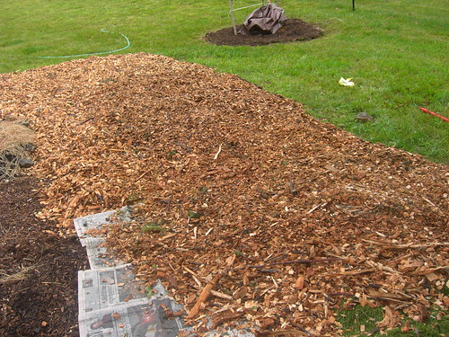 How to create a no till garden bed green talk
