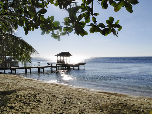 beach america honduras roatan westend holydays centralamerica bayislands 5photosaday 'gettyvacation2010'