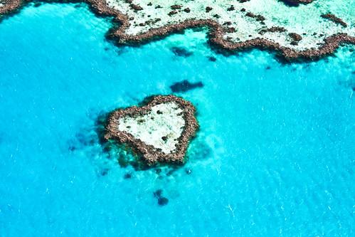 Scherzi della Natura...Amiamola e rispettiamola !!!